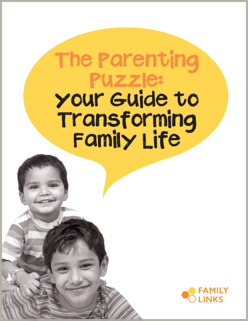 Family Links: The Parenting Puzzle Book